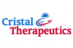 Cristal Therapeutics appoints Dr Werner Cautreels as a new Director and Board Chairman and Andre Verwei as Chief Financial Officer